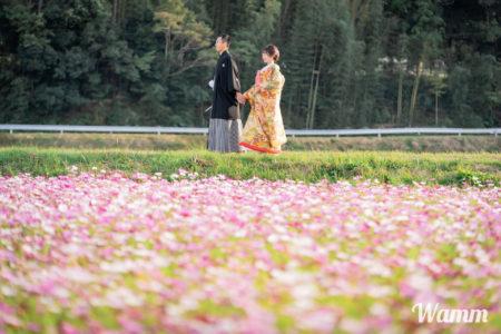 【早期予約】季節のお花のモニターモデル募集中